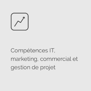 Icon compétences business, marketing, IT, gestion de projet @agencefindly