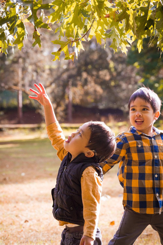amanda ah photo-10.jpg