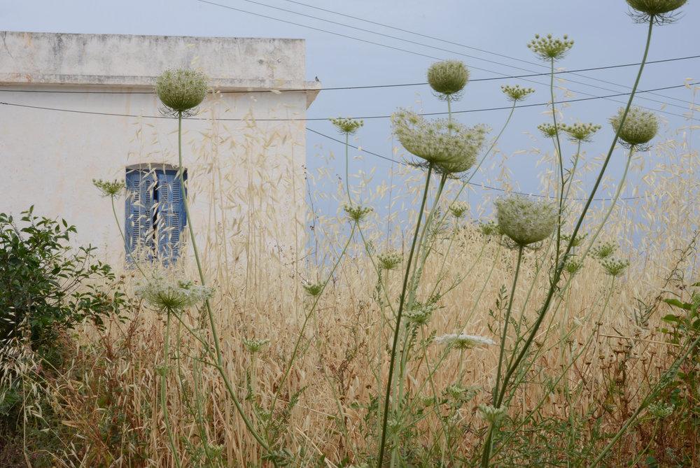 Milos - Abandoned House