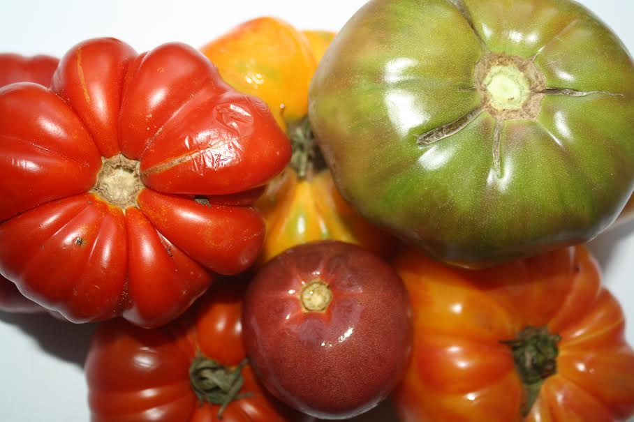 Cherokee Red Heirloom Tomato and other finds at the farmer's market
