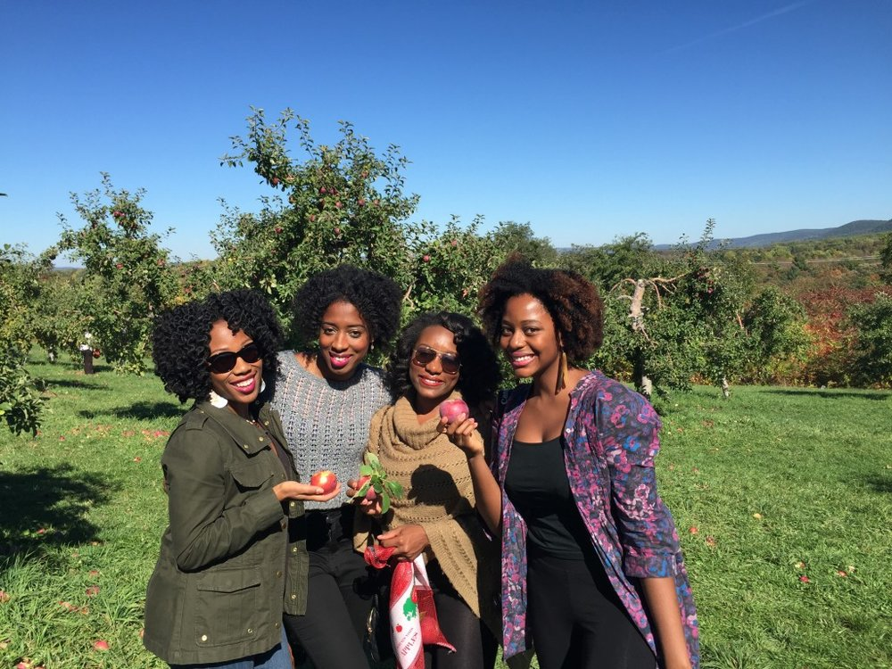 Blacks apple picking