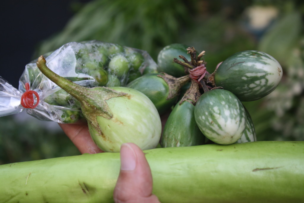 Three varieties of Thai Eggplant