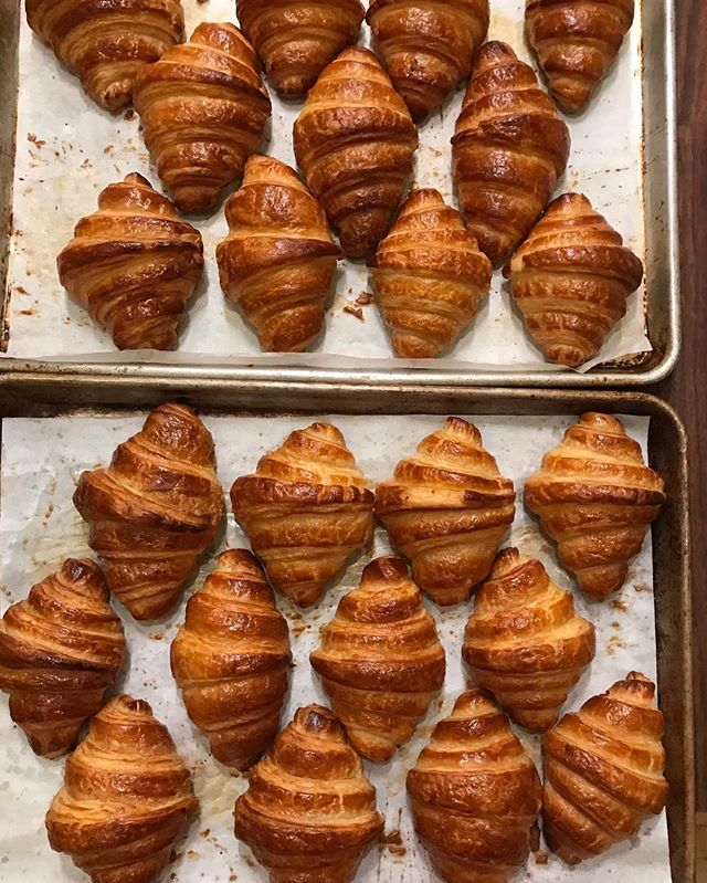Hand-rolled Croissants. 🥐 Wondering how these would taste with a drizzle of caramel? I made caramel on IG stories this morning, so head over & check it out! But, I don't think there's anything more therapeutic than laminating dough— the process of folding butter into dough which gives croissants (and puff pastry!) all of those layers. Bakeries use a machine for this, but I love doing it by hand. (Plus, those machines are $$$- but I'd love to play around with one.. 😆)