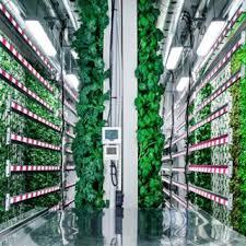 indoor mod farm 6.jpg