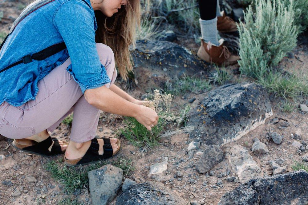 Taos2017Retreat-7137.jpg