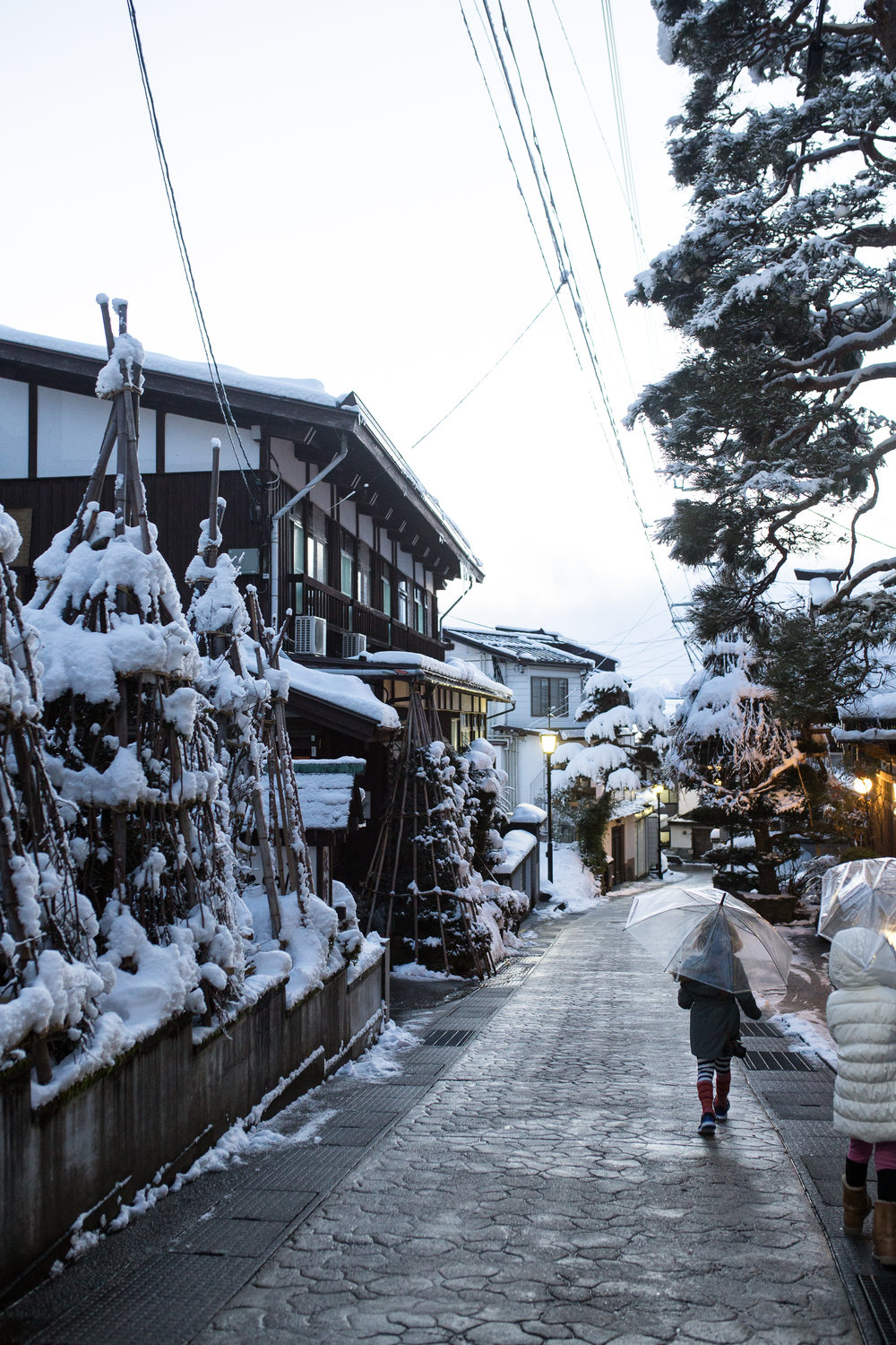 Nozawa Onsen, and an example of the supportive structures that are built around the trees in the villiage
