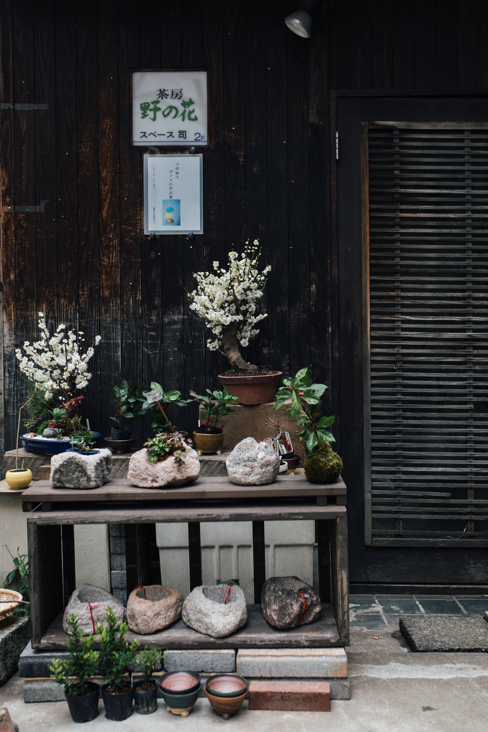 Tsukasa, a charming florist in Ginza, Tokyo, dedicated to native plants and wild grasses.