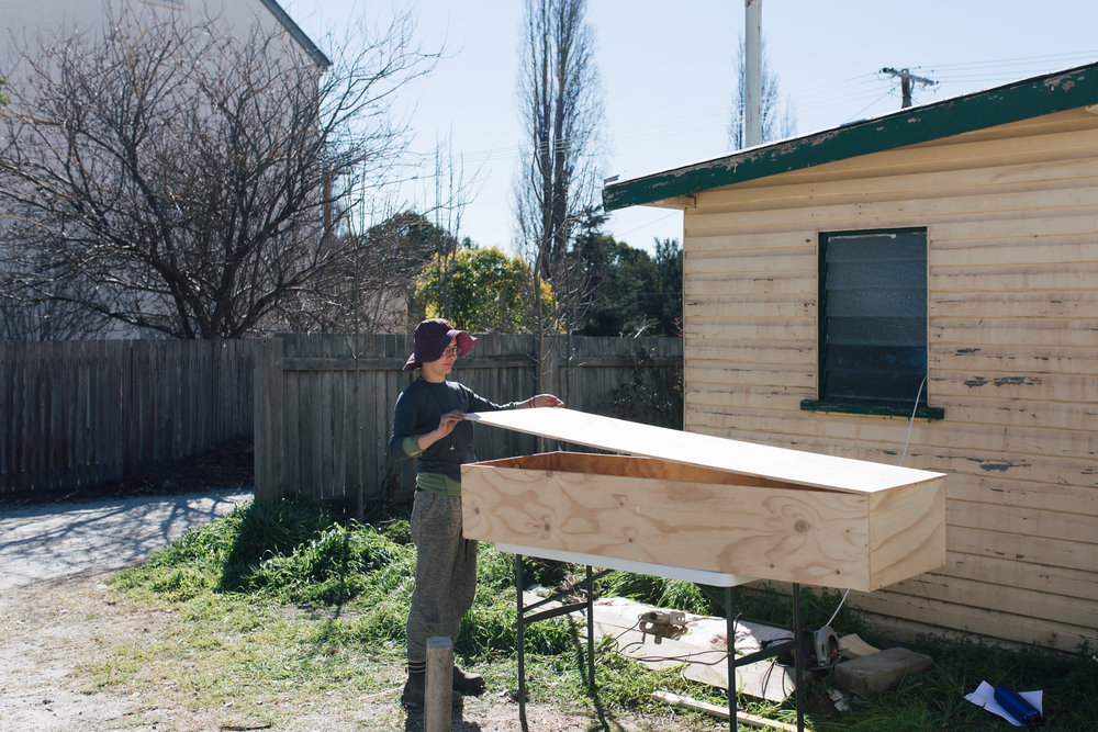 Iris making the plywood coffin