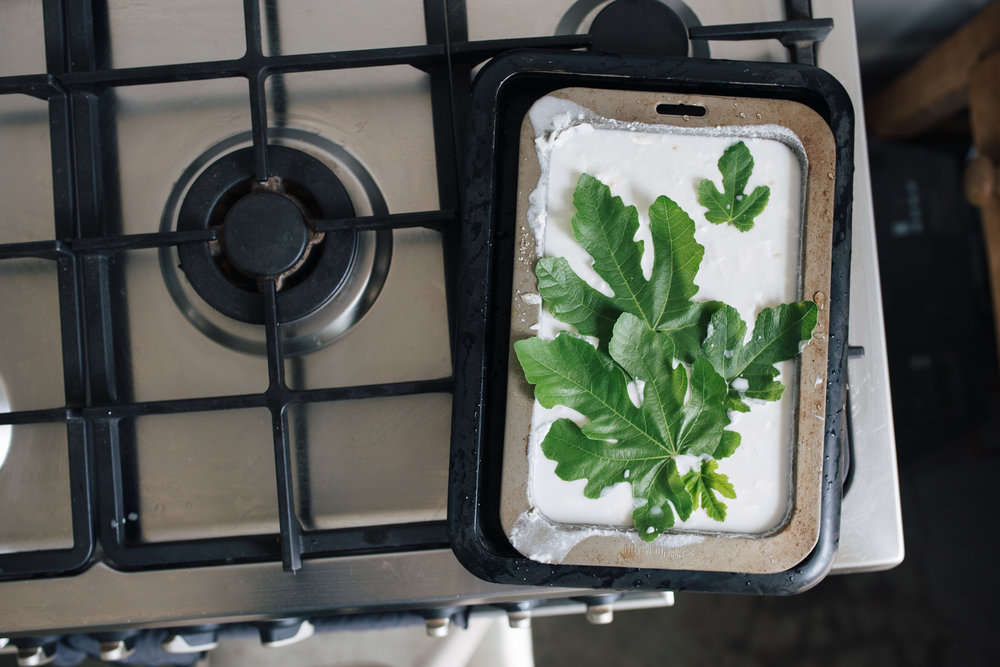 A coconut and fig leaf rice pudding about to go in the oven. Just make the rice pudding as per, but with coconut milk for the liquid. Place fig leaves on the bottom and top to infuse the pudding with their delicious scent.
