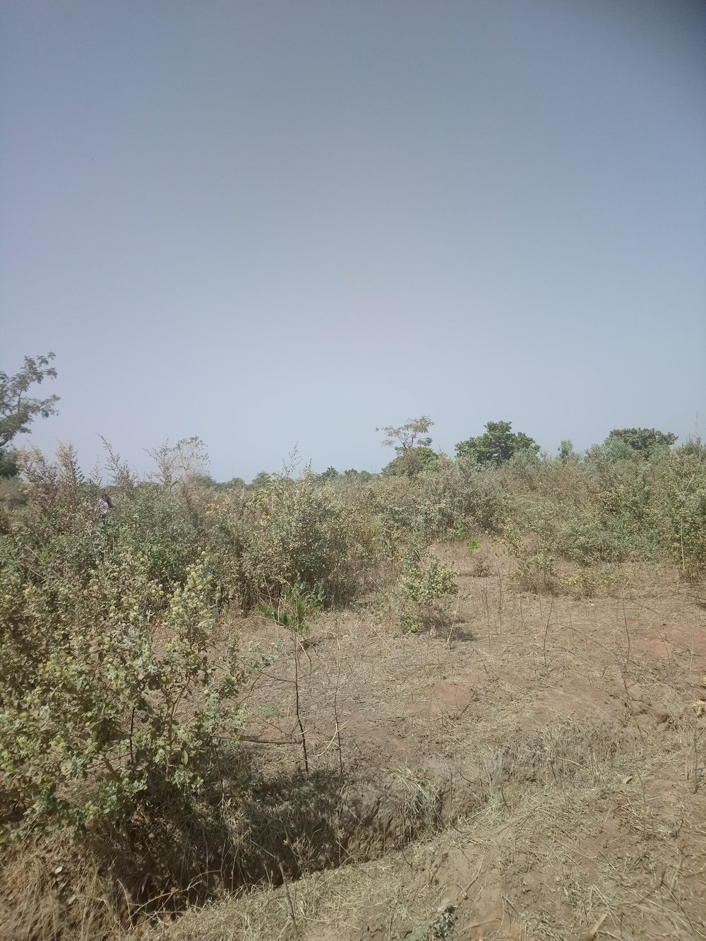 Land for sale in Gambia build a house holiday home