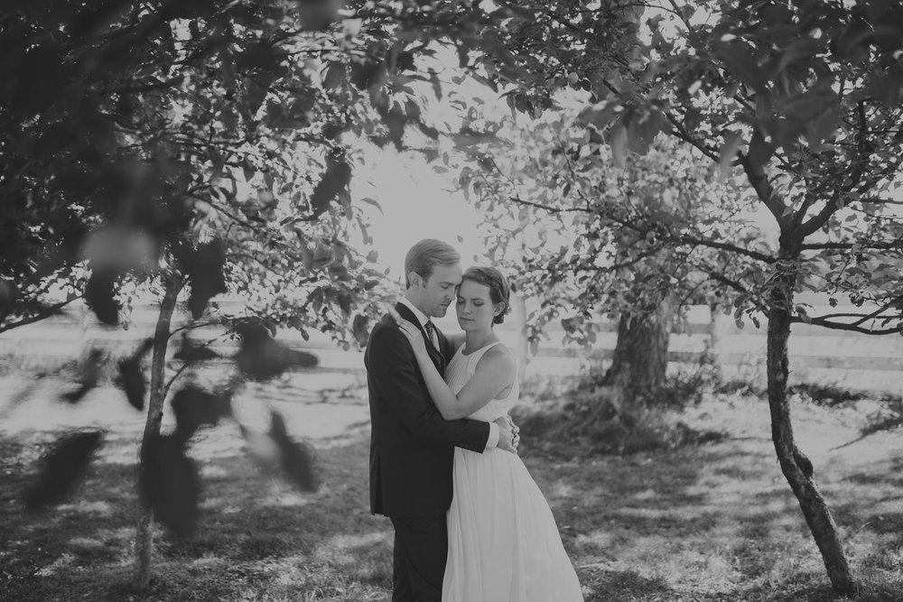 chicago_backyard_wedding_photography-0147
