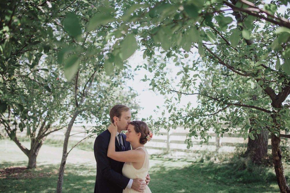 chicago_backyard_wedding_photography-0152