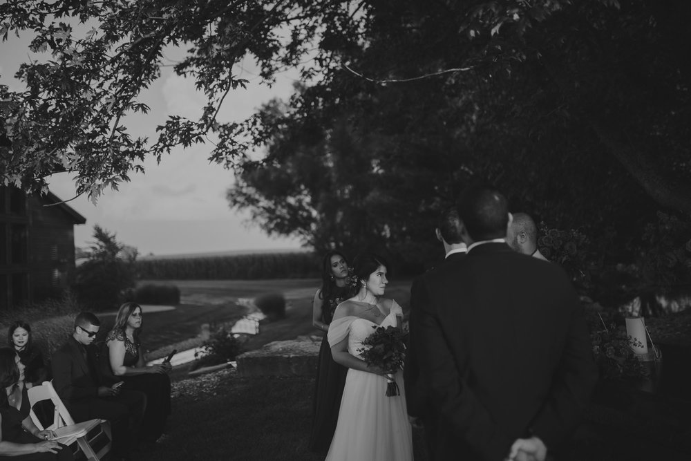 champaign_il_pear_tree_wedding_photography-0146
