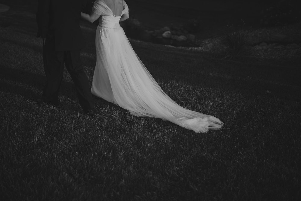 champaign_il_pear_tree_wedding_photography-0184