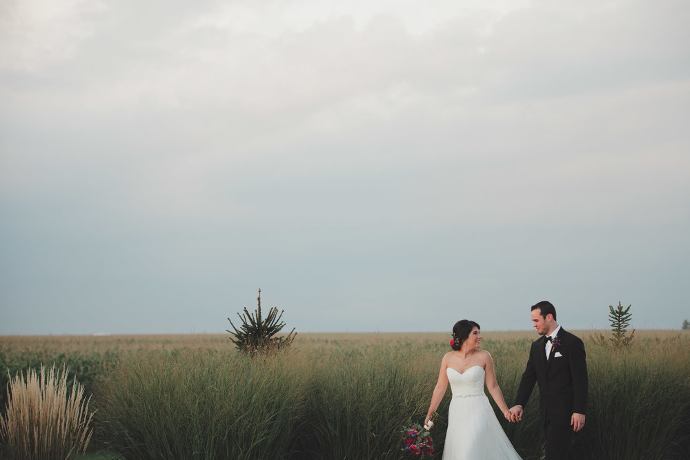 champaign_il_pear_tree_wedding_photography-0267