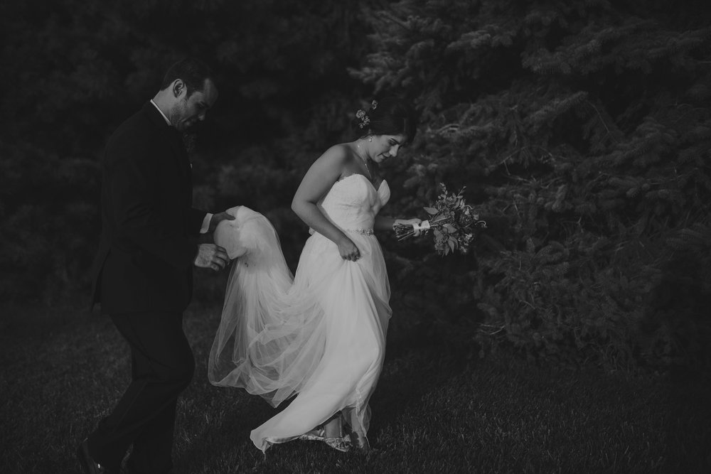 champaign_il_pear_tree_wedding_photography-0295
