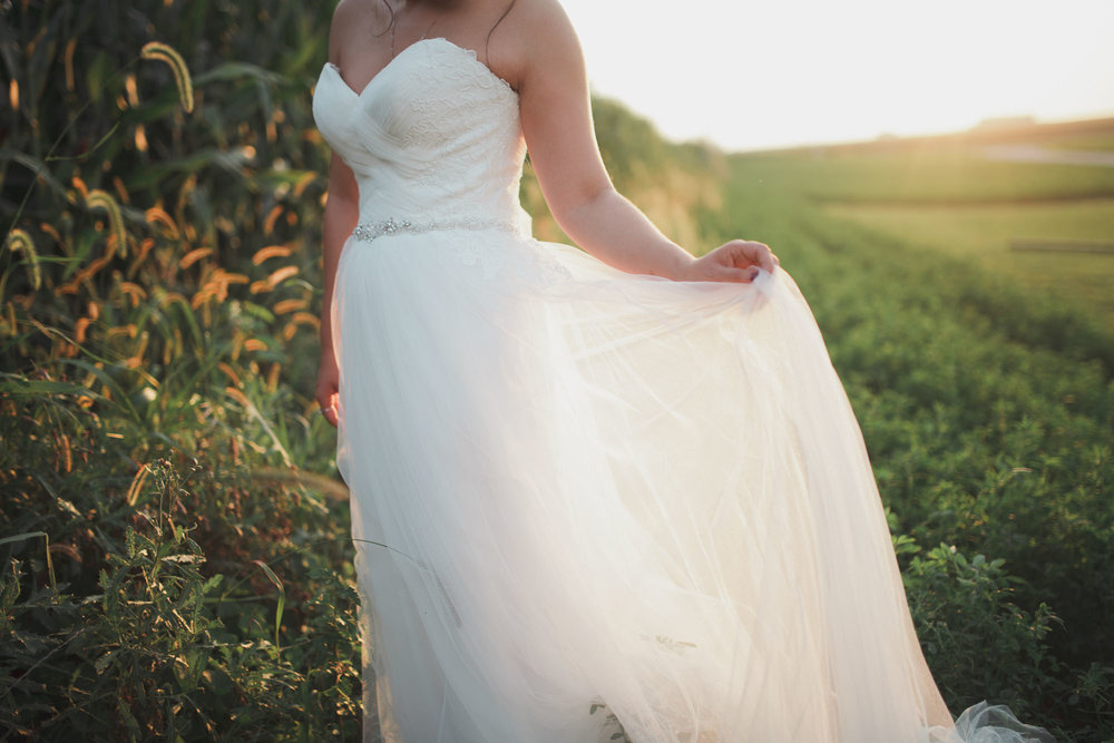 champaign_il_pear_tree_wedding_photography-0314