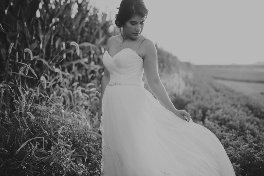 champaign_il_pear_tree_wedding_photography-0315