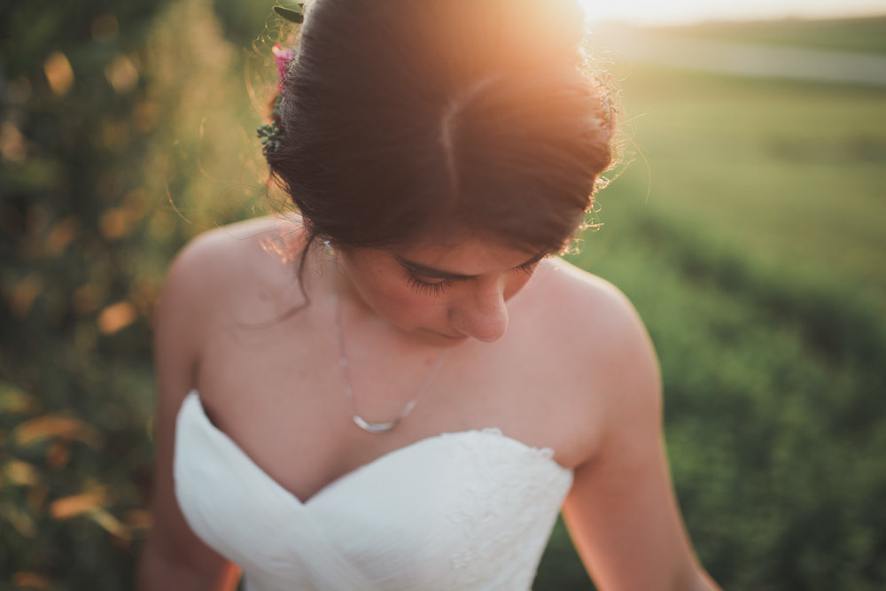 champaign_il_pear_tree_wedding_photography-0325