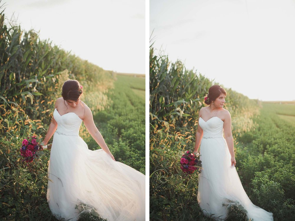 champaign_il_pear_tree_wedding_photography-25
