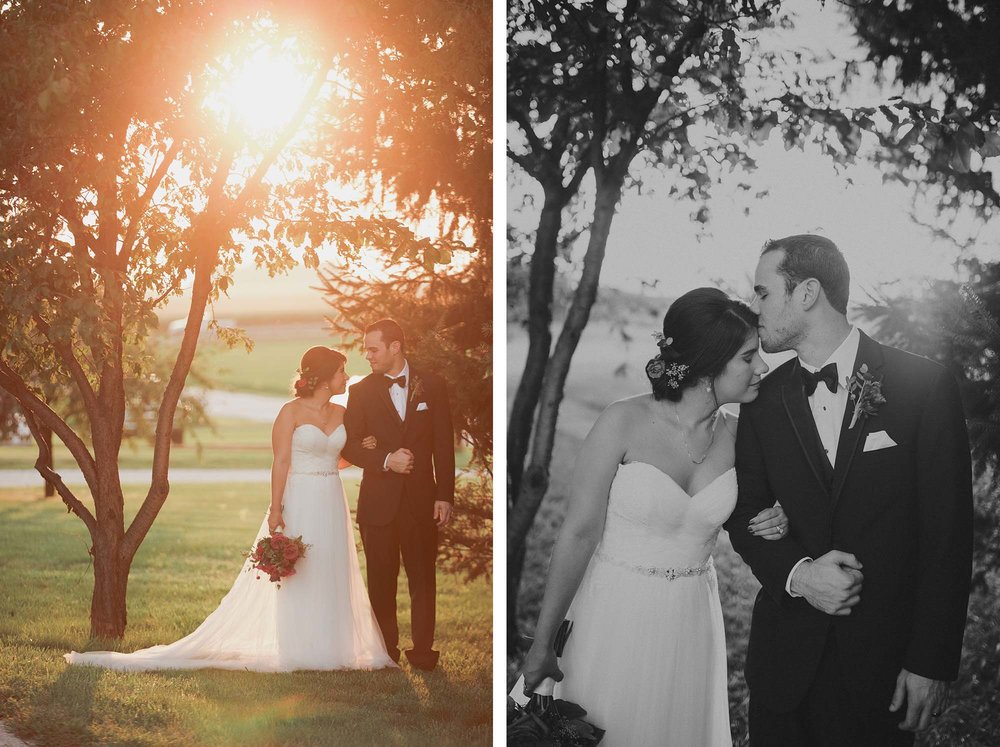 champaign_il_pear_tree_wedding_photography-28