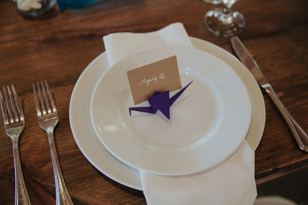 champaign_il_intimate_wedding_photography-0477