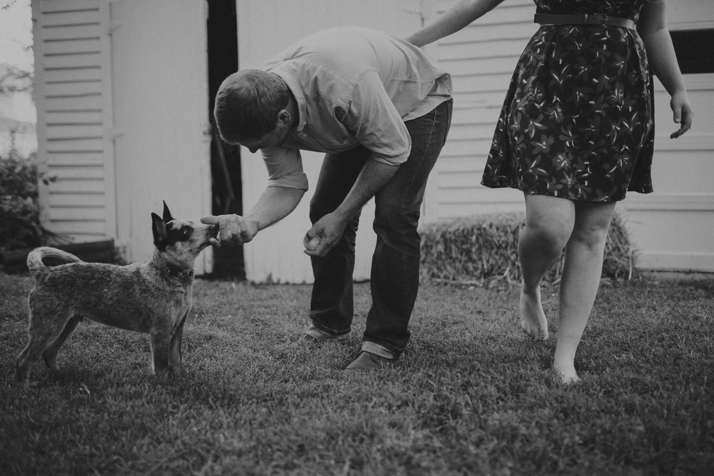 champaign_il_engagement_photography-0099