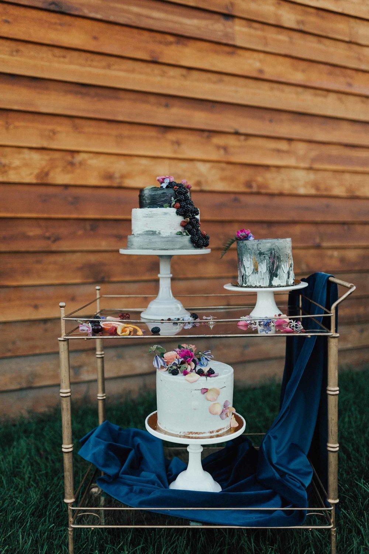 champaign_il_wedding_photography-0249.jpg