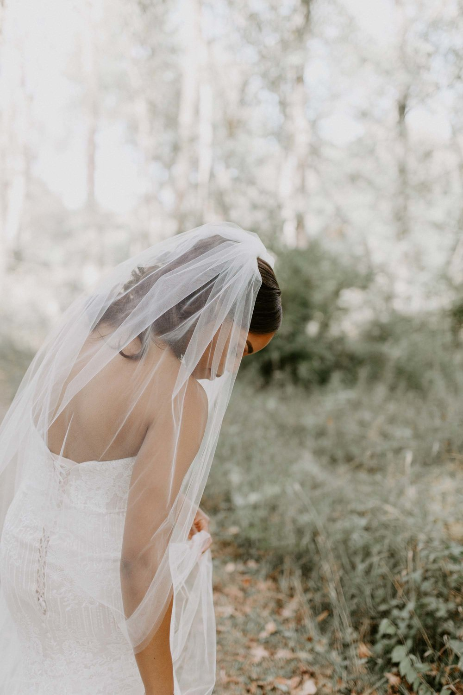 prairie_glass_house_wedding_champaign_wright_photographs_simon_0038.jpg
