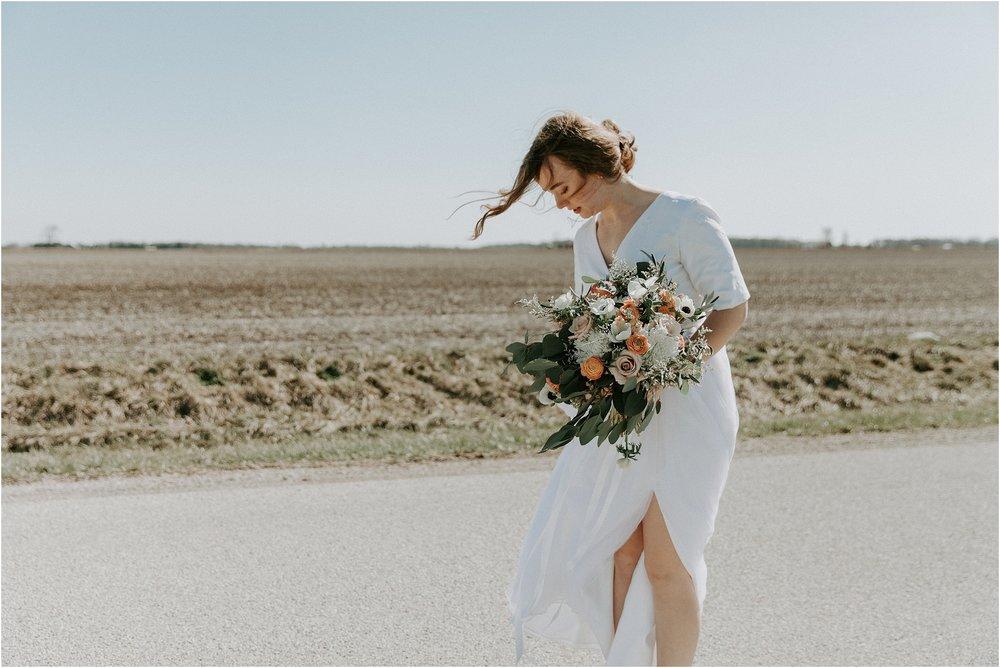 willow_creek_farm_champaign_wedding_wright_photographs_street_0407.JPG