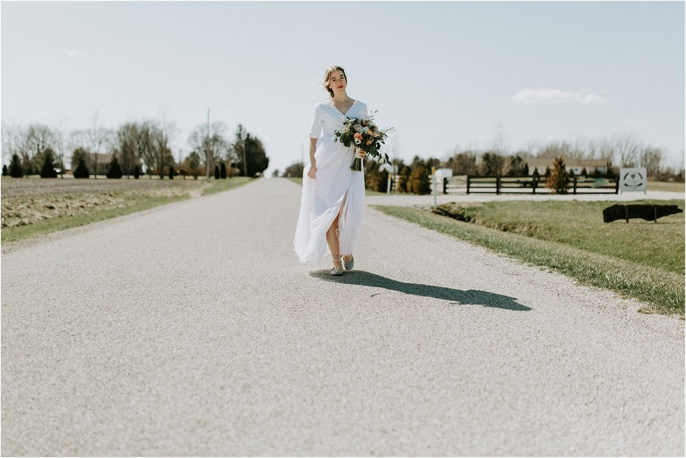 willow_creek_farm_champaign_wedding_wright_photographs_street_0411.JPG