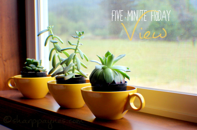 Five Minute Friday: View