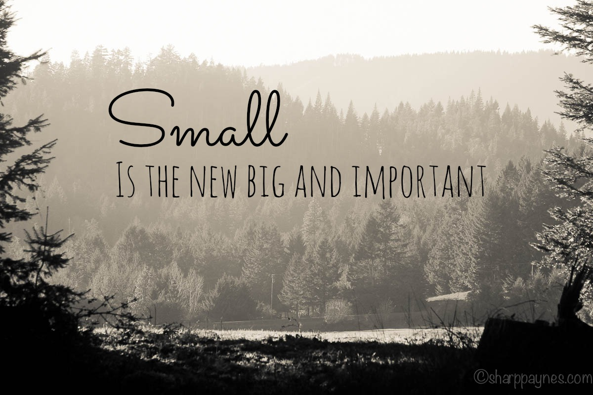 small is the new big and important