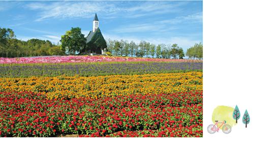 ひるがの高原 牧歌の里」は、広い園内に、馬や羊が放牧されたのどかな風景が広がる。一面に広がる花々は、子どもたちの自然観察にも◎