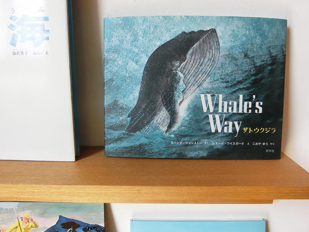 「ザトウクジラ」は、50年以上前にアメリカで出版された絵本で、ちょうどこの夏、日本で初翻訳されました。