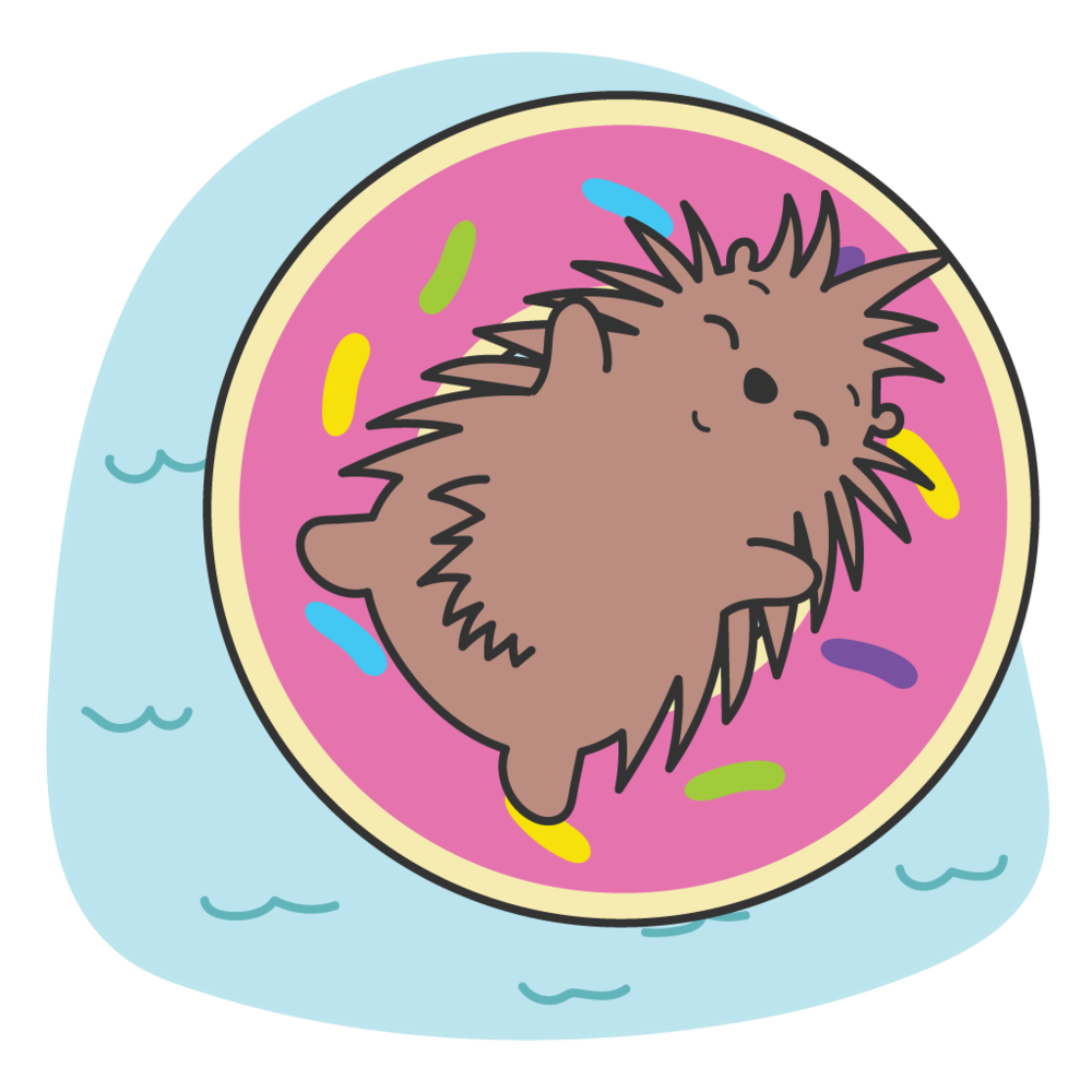 Porcupine-PoolDonut.png