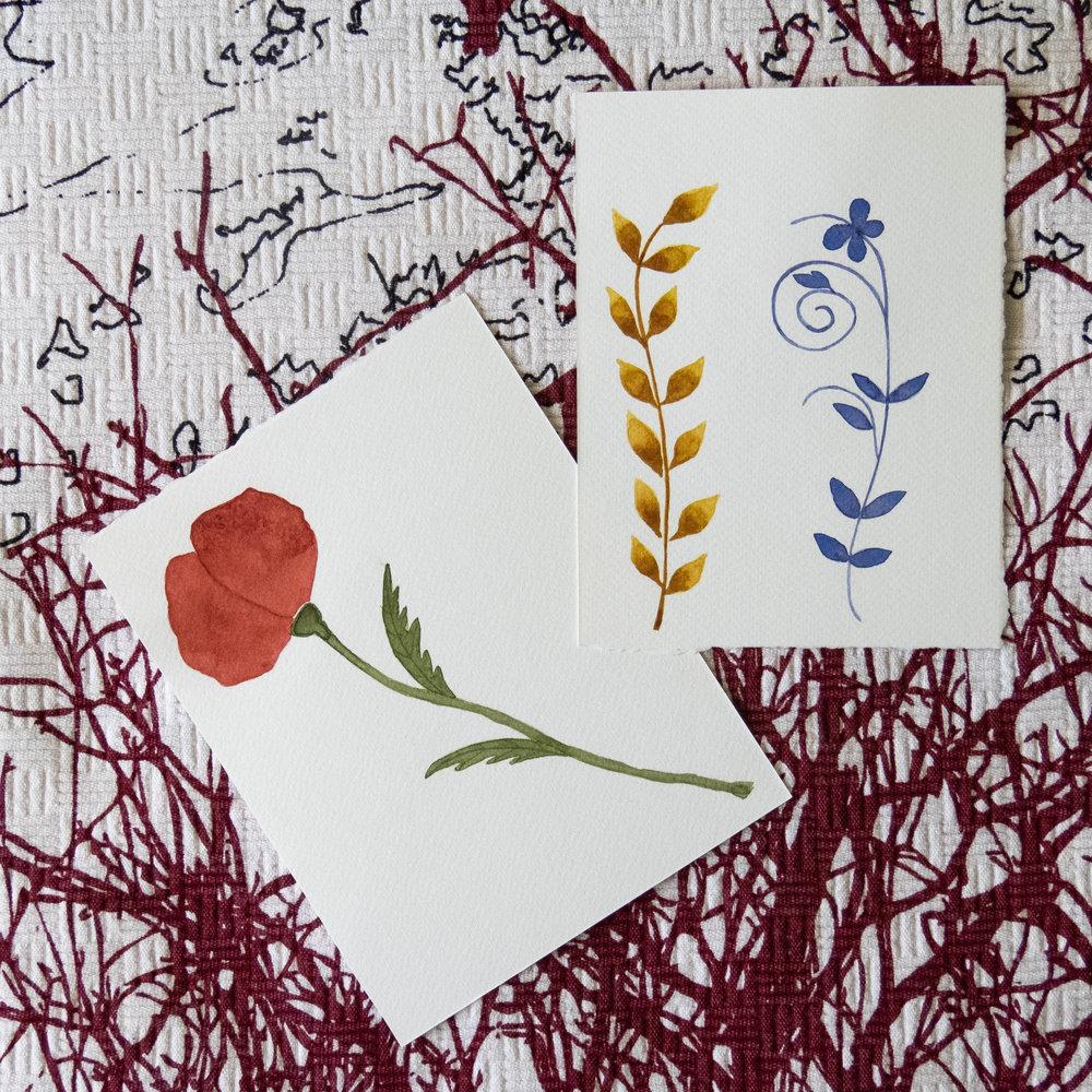 poppy and wild flowers illustration