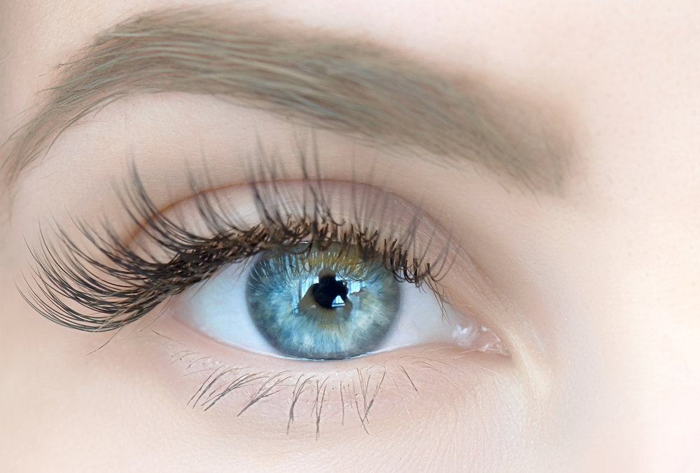 LASHES & BROWS - Known as the 'window to your soul', why not have your eyes groomed too.