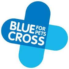 Blue Cross logo.jpg