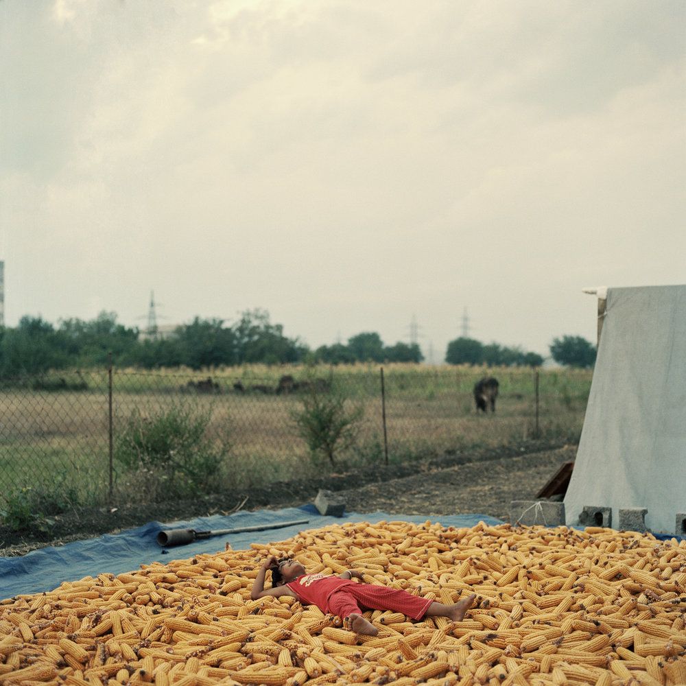 Sikh farmers_27.jpg