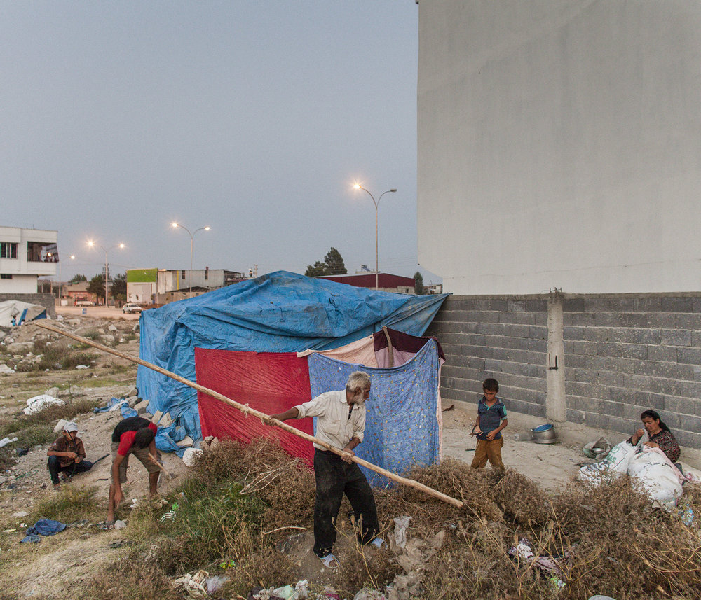 Shelter-9.jpg