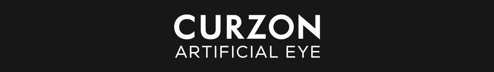 IntWebsite_Clients_White_CurzonArtificialEye_02.jpg