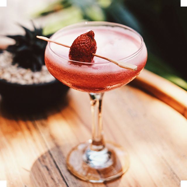 Desiring something fancy for your romantic evening? PINK BLOSSOM is for you. . A delightful combination of citrus vodka, gin, homemade pink pure, and chardonnay syrup. . Available until Feb 28th. #valentinesday #cocktails . . . . . . #balibeachclub #valentinecocktails #mixology #mixologist #gin #vodka #ginstagram #vodkagram #imbibe #craftedmixology #feedfeedcocktails #cocktail #craftcocktails #craftspirits #mixology #imbibe #imbibegram #cocktailart #valentine #manobeachhouse #balitrip #balibeachclub #seminyak #canggu #balicafes #canggubar #balicocktails