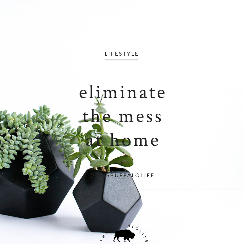 eliminatemess2.jpg