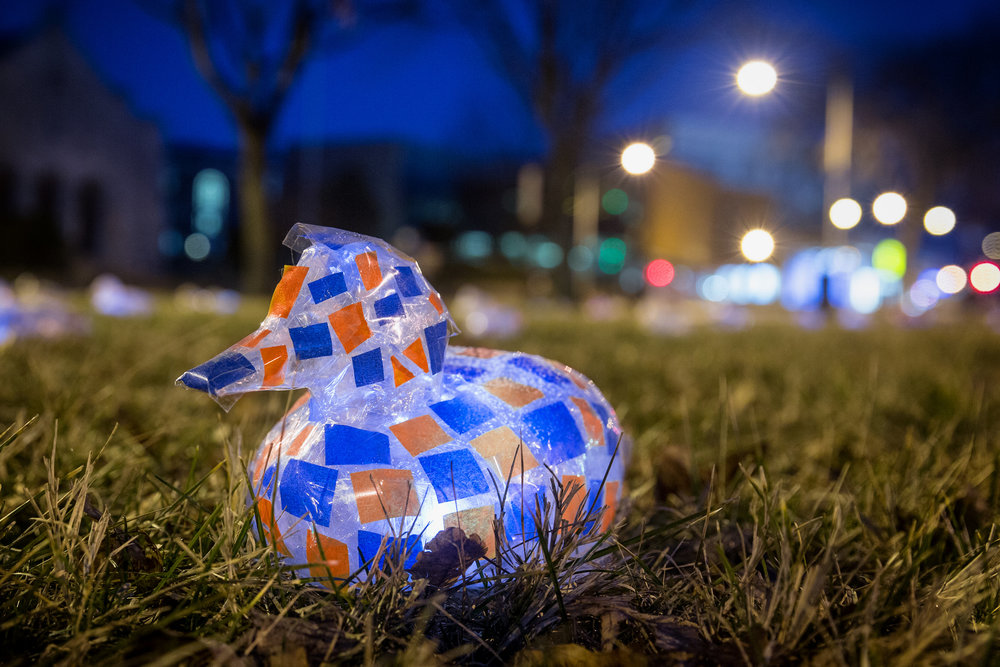 Blue and Orange Duck, #100DucksDC