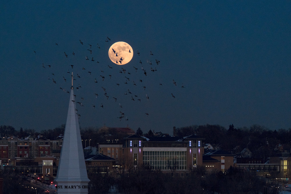 The super moon seen from St Paul, MN