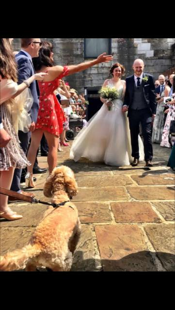 Congratulations - Our career Esme was looking after Pippin while the owners were getting married. The husband asked if Esme would bring Pippin along as a surprise to the wife so they could all be together on the big day.Obviously Esme was delighted to do this and here is the evidence. What a lovely gesture.Who here agrees 👍 👰🤵🐶❤️