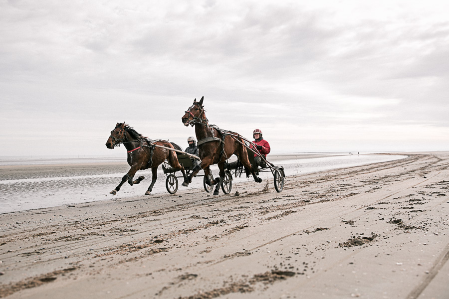 alice bertrand photographe livre cotentissime trotteurs utah beach-002.jpg