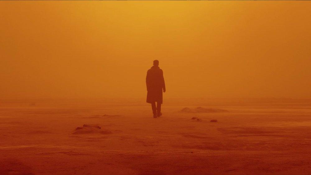 Blade Runner 2049 (2017) - Directed by: Denis VilleneuveWritten by: Hampton Fancher & Michael Green