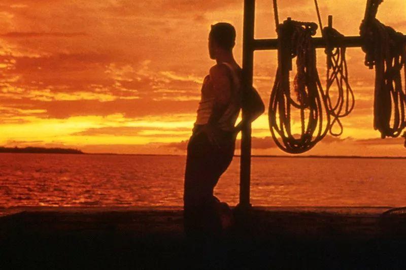 Forrest Gump (1994) - Directed by: Robert ZemeckisWritten by: Eric Roth & Winston Groom (novel).